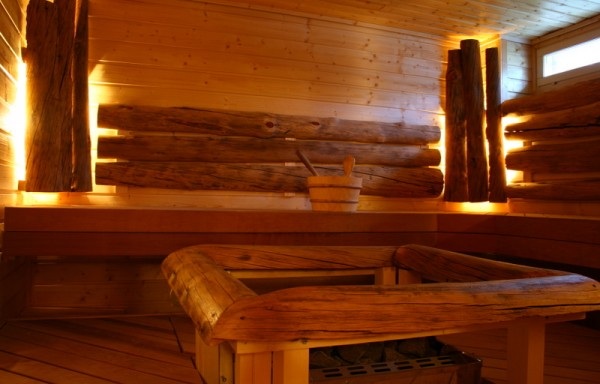 Electric heated Sauna